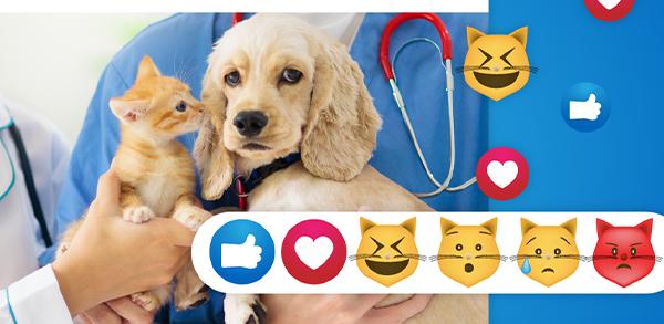 redes sociales clínica mascotas